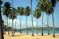 Luquillo Beach Palm Tree lined beach