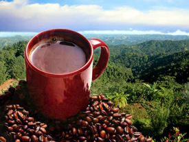 Puerto Rican Coffee