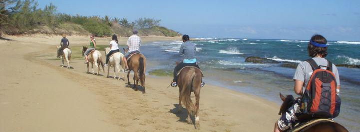 Horseback Riding Las Dunas Jobos Beach Puerto Rico