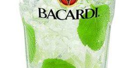 Bacardi Rum Tour Catano Puerto Rico