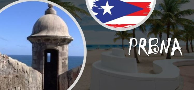 Puerto Rico Business Alliance Network Kick off Event