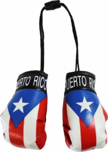Puerto Rico Flag Boxing Gloves