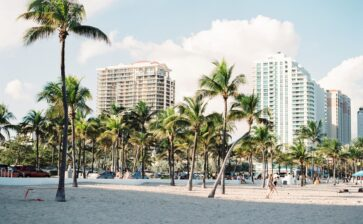 Top Cities to Visit in Florida