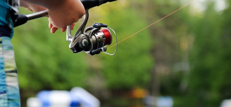 Fishing Basics You Need to Know to Get Started