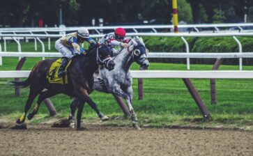 Important Details You Should Know About Sports Betting Before Trying It Out